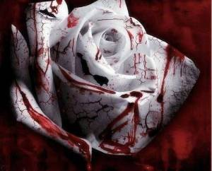 sonnet_for_a_wounded_rose