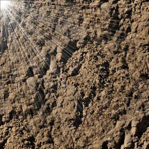 grace_in_the_dirt