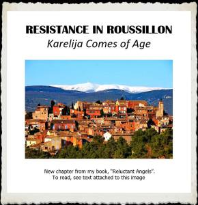 book_resistance_in_roussillon
